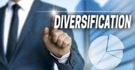 Dywersyfikacja – recepta na sukces czy przeciętne zyski?